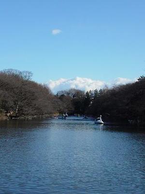 Mt_inokashira